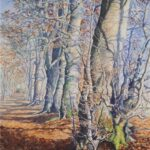 """Winter Beeches, Caddam Wood"", watercolour, SOLD"